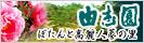 日本庭園【 由志園 】